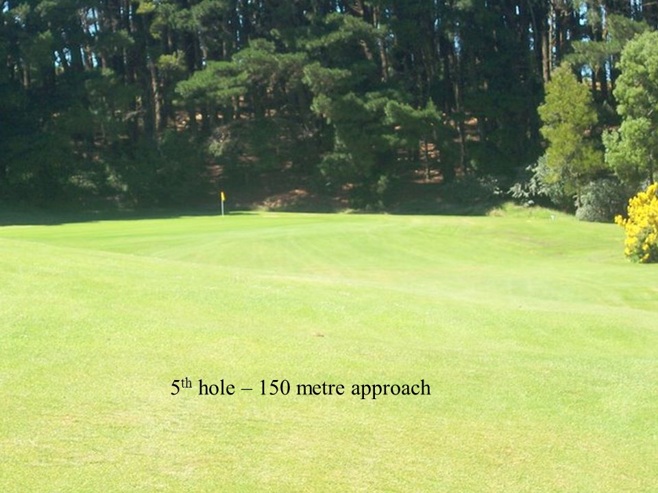 5 th hole – 150 metre approach