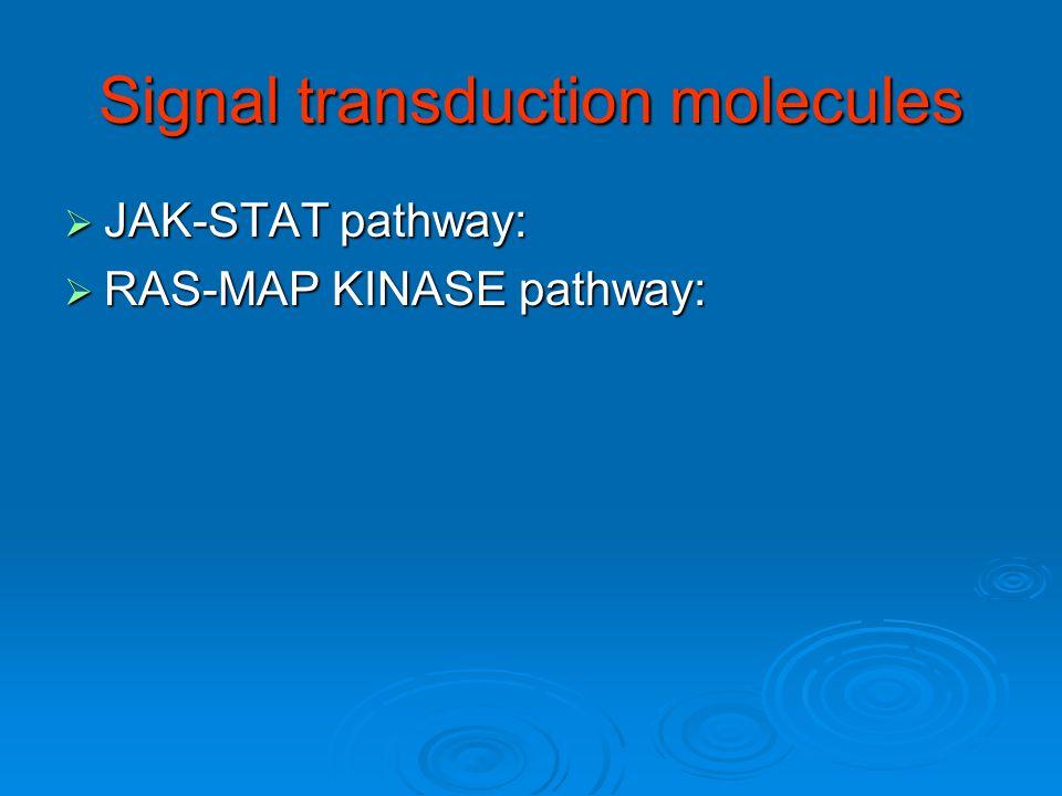 Signal transduction molecules  JAK-STAT pathway:  RAS-MAP KINASE pathway: