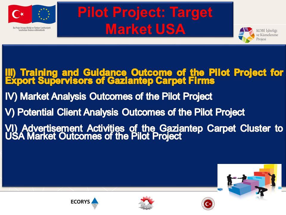 Pilot Project: Target Market USA