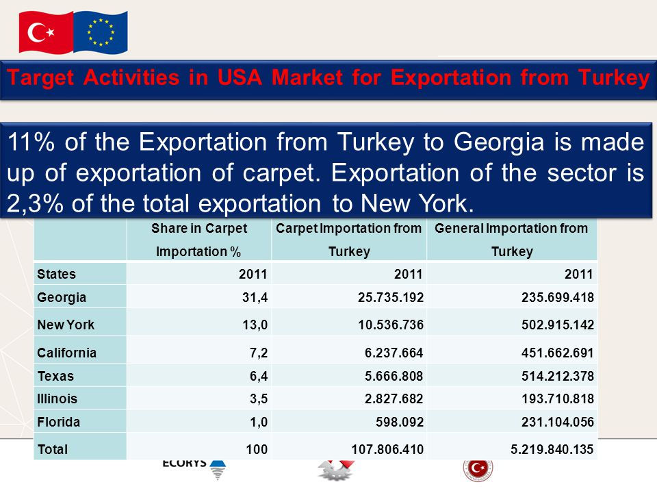 Target Activities in USA Market for Exportation from Turkey Share in Carpet Importation % Carpet Importation from Turkey General Importation from Turkey States2011 Georgia31, New York13, California7, Texas6, Illinois3, Florida1, Total % of the Exportation from Turkey to Georgia is made up of exportation of carpet.