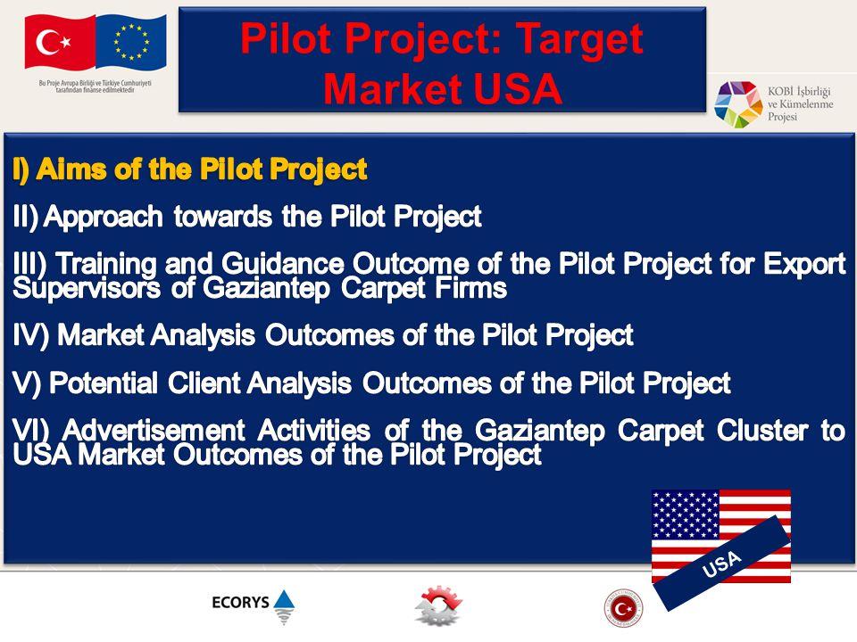 Pilot Project: Target Market USA USA