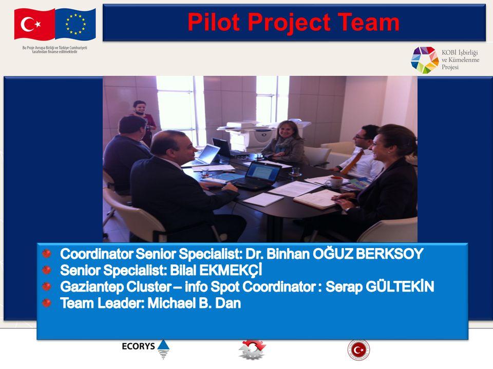 Pilot Project Team