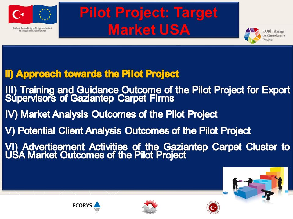 « How to Make the Pilot Project Efficient for Both the Participants and the Cluster in General ?» Are the Firms Ready for USA.