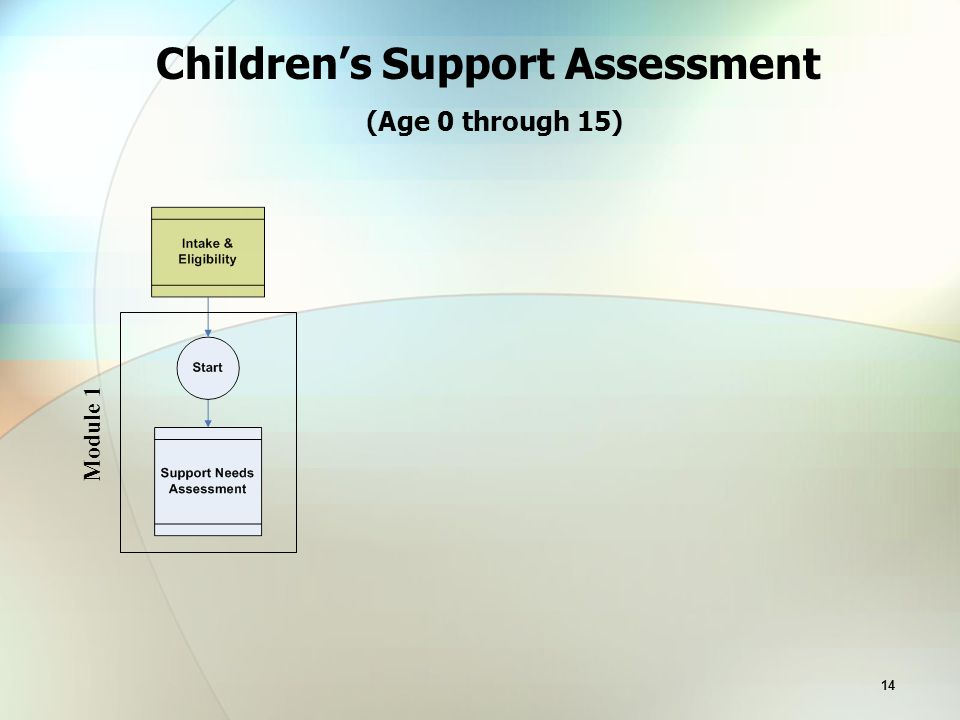 14 Children's Support Assessment (Age 0 through 15) Module 1