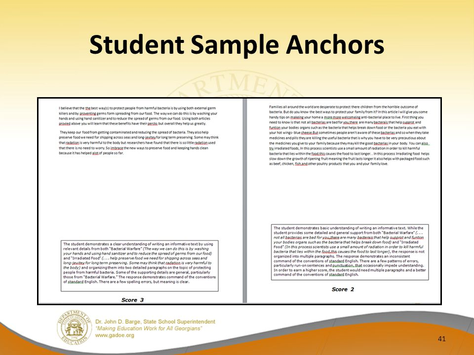 Student Sample Anchors 41