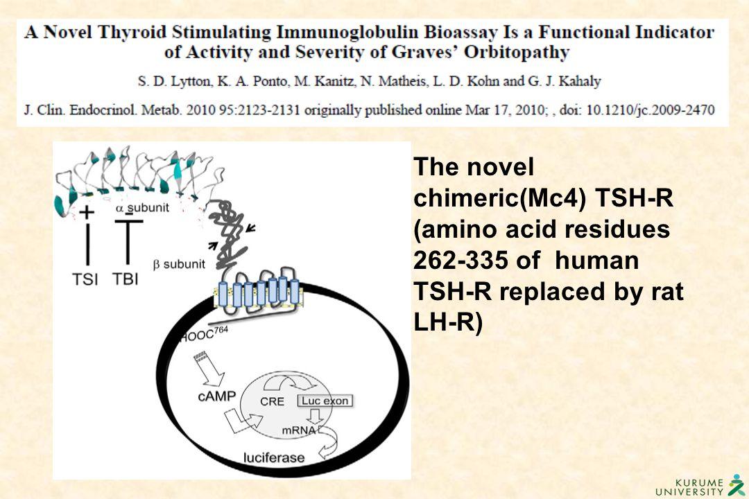 The novel chimeric(Mc4) TSH-R (amino acid residues 262-335 of human TSH-R replaced by rat LH-R)