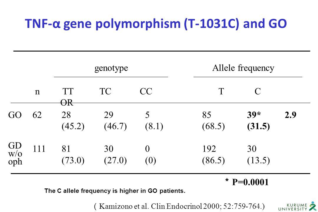 genotypeAllele frequency TT TC CC T C OR n 28 (45.2) 81 (73.0) 29 (46.7) 30 (27.0) 5 (8.1) 0 (0) 85 (68.5) 192 (86.5) 39* (31.5) 30 (13.5) GO GD w/o o