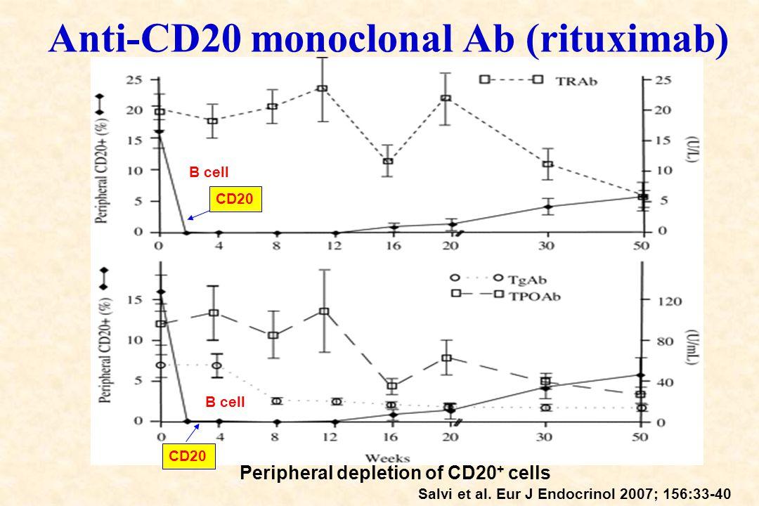 Anti-CD20 monoclonal Ab (rituximab) Peripheral depletion of CD20 + cells Salvi et al. Eur J Endocrinol 2007; 156:33-40 CD20 B cell