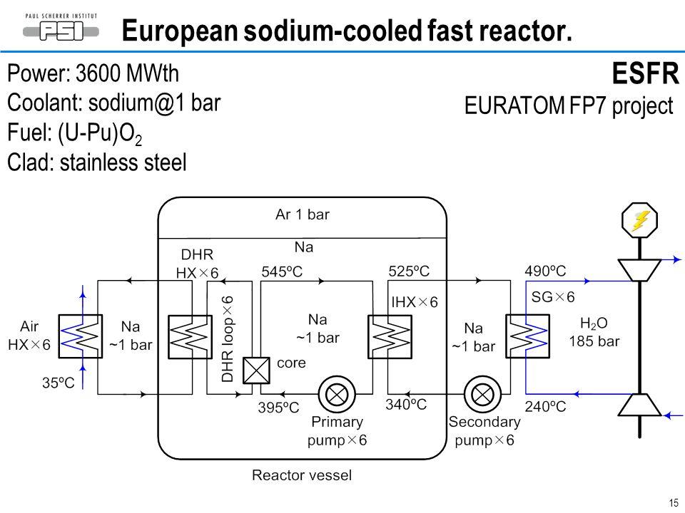 15 European sodium-cooled fast reactor.