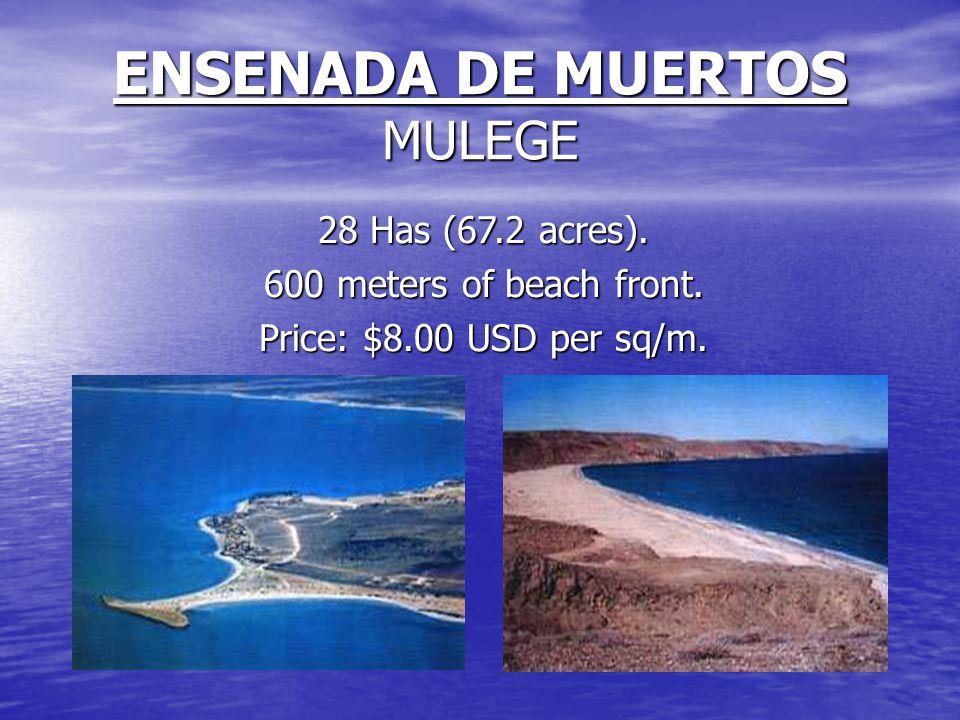 ENSENADA DE MUERTOS MULEGE 28 Has (67.2 acres). 600 meters of beach front.