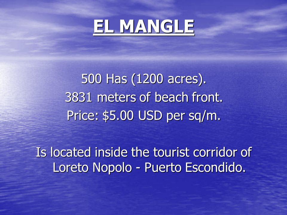 EL MANGLE 500 Has (1200 acres). 3831 meters of beach front.