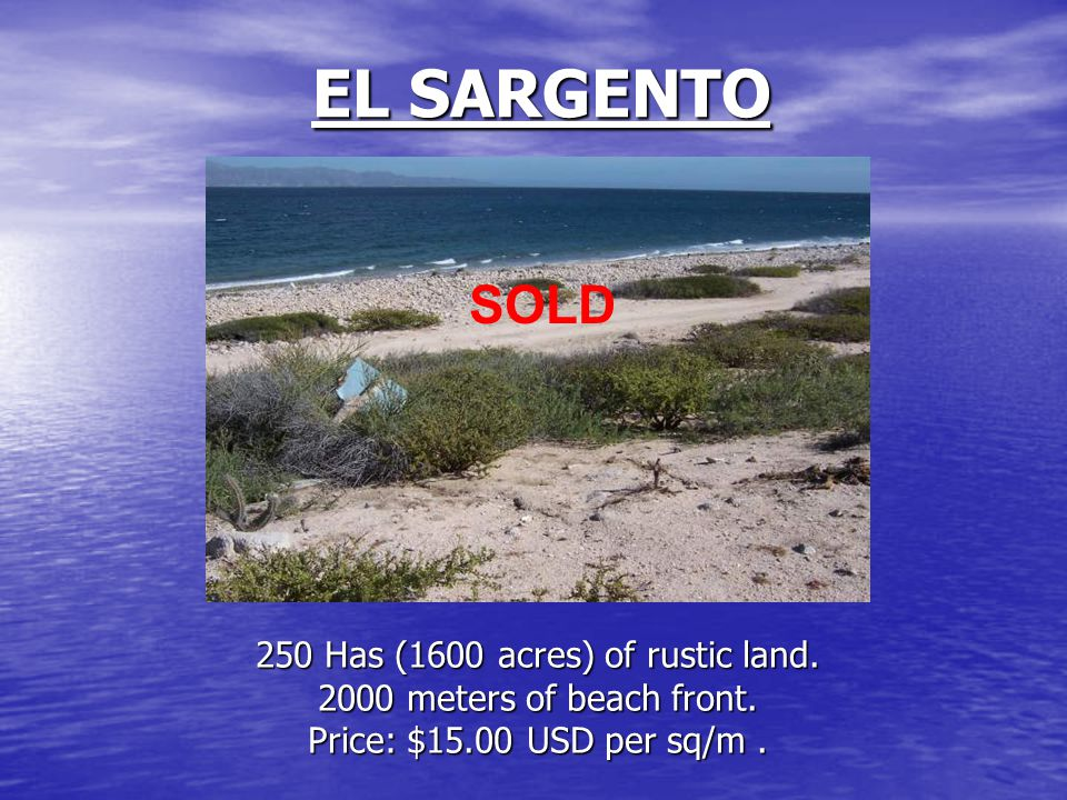 EL SARGENTO 250 Has (1600 acres) of rustic land. 2000 meters of beach front. Price: $15.00 USD per sq/m. SOLD
