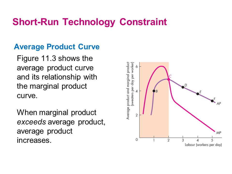 Average Product Curve Figure 11.3 shows the average product curve and its relationship with the marginal product curve. Short-Run Technology Constrain