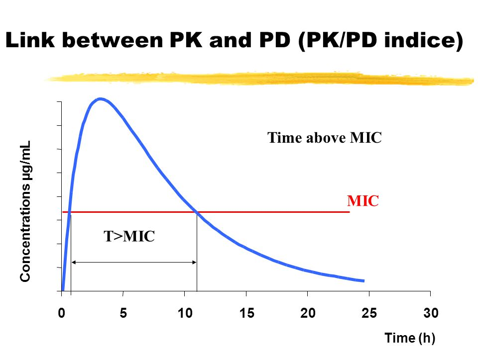 Concentrations µg/mL Time (h) Link between PK and PD (PK/PD indice) Time above MIC MIC T>MIC