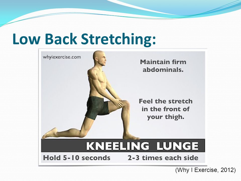 Low Back Stretching: (Why I Exercise, 2012)