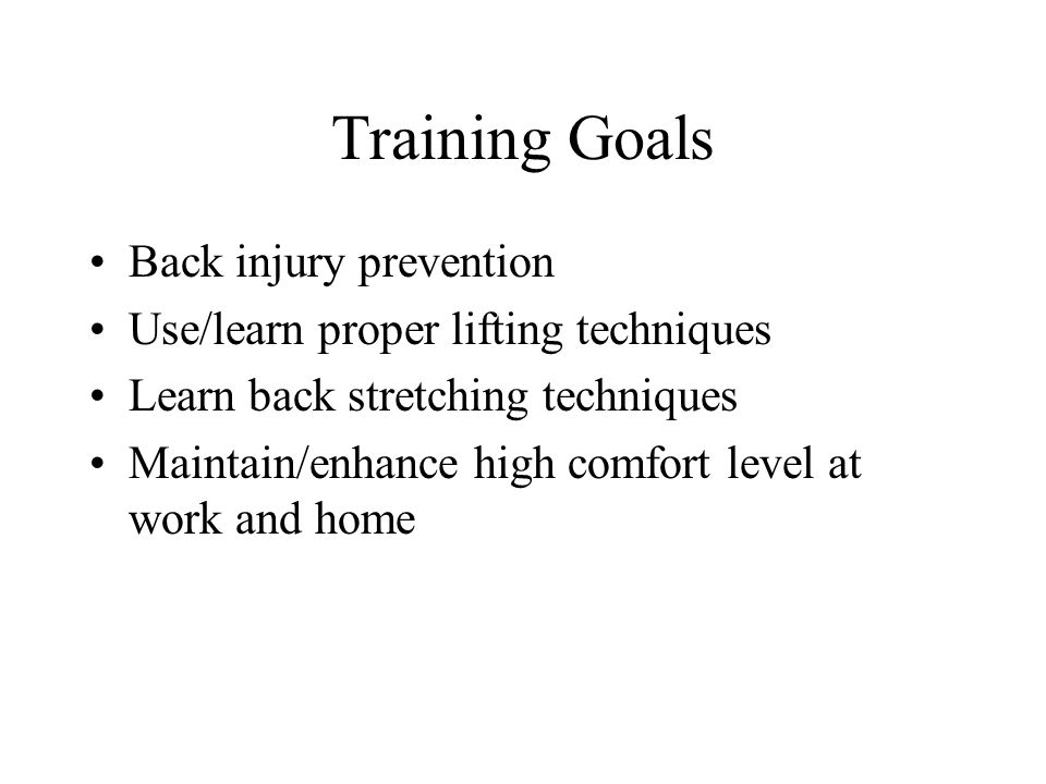 Training Goals Back injury prevention Use/learn proper lifting techniques Learn back stretching techniques Maintain/enhance high comfort level at work