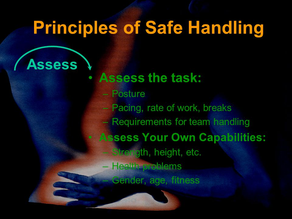 Principles of Safe Handling Assess the task: –Posture –Pacing, rate of work, breaks –Requirements for team handling Assess Your Own Capabilities: –Strength, height, etc.