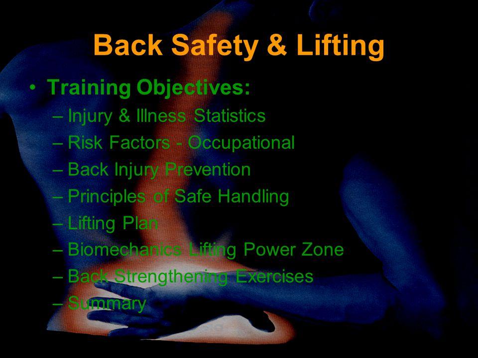 Back Safety & Lifting Training Objectives: –Injury & Illness Statistics –Risk Factors - Occupational –Back Injury Prevention –Principles of Safe Handling –Lifting Plan –Biomechanics Lifting Power Zone –Back Strengthening Exercises –Summary
