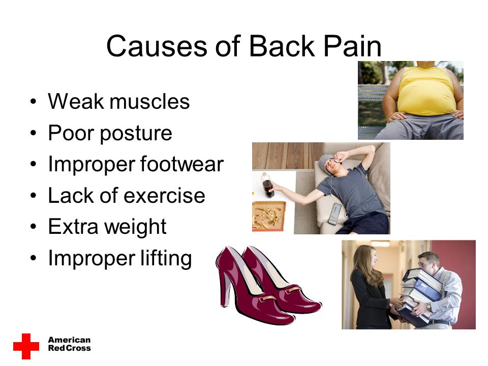 Prevention is Up to You Use proper posture Use appropriate lifting techniques Practice healthy back habits Strengthen your back, leg and stomach muscles Stretch your back, leg and stomach muscles