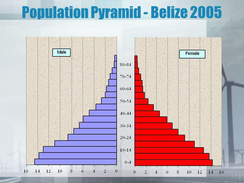 Population Pyramid - Belize 2005