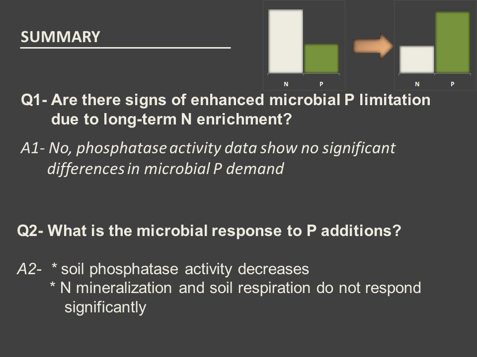 SUMMARY A1- No, phosphatase activity data show no significant differences in microbial P demand Q1- Are there signs of enhanced microbial P limitation due to long-term N enrichment.