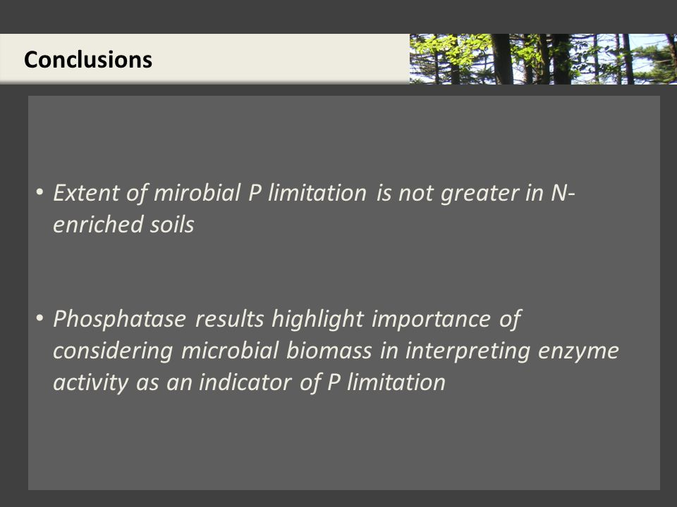 Conclusions Extent of mirobial P limitation is not greater in N- enriched soils Phosphatase results highlight importance of considering microbial biomass in interpreting enzyme activity as an indicator of P limitation