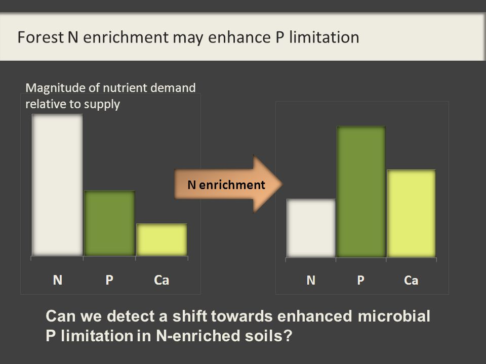 Forest N enrichment may enhance P limitation N enrichment Can we detect a shift towards enhanced microbial P limitation in N-enriched soils.