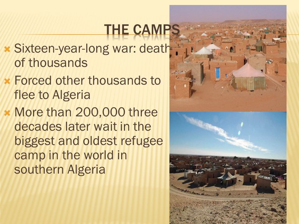  Sixteen-year-long war: death of thousands  Forced other thousands to flee to Algeria  More than 200,000 three decades later wait in the biggest and oldest refugee camp in the world in southern Algeria