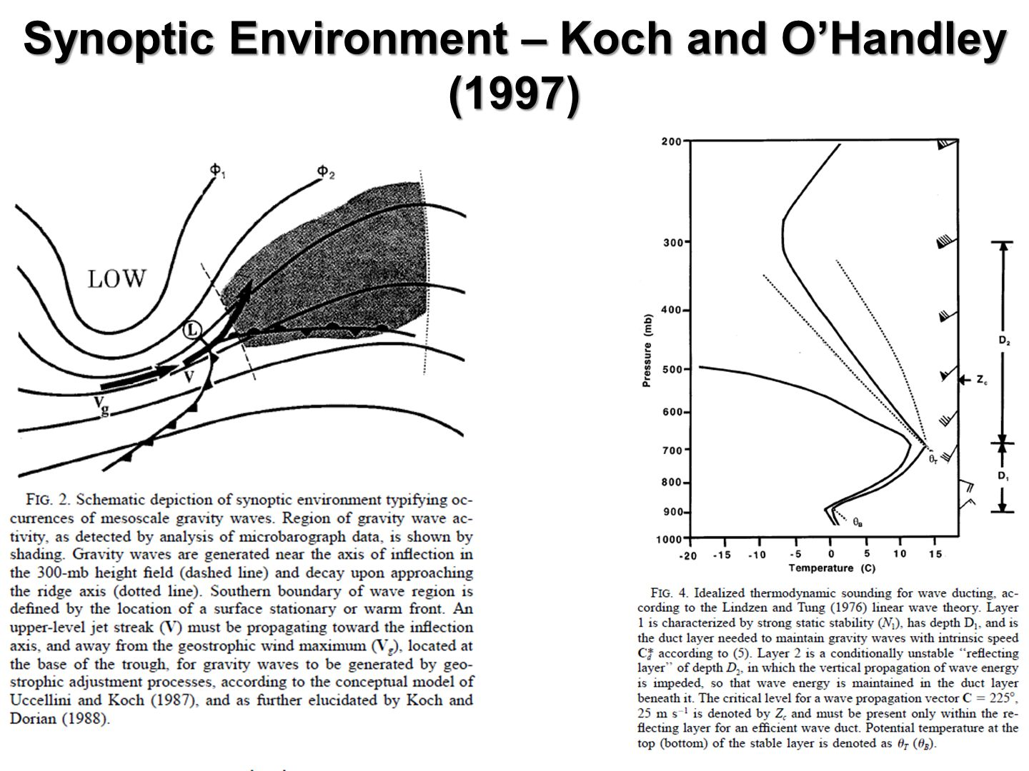 Synoptic Environment – Koch and O'Handley (1997)