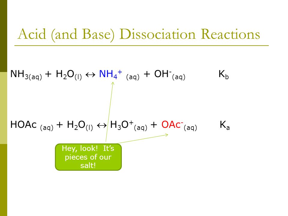Acid (and Base) Dissociation Reactions NH 3(aq) + H 2 O (l)  NH 4 + (aq) + OH - (aq) K b HOAc (aq) + H 2 O (l)  H 3 O + (aq) + OAc - (aq) K a Hey, look.