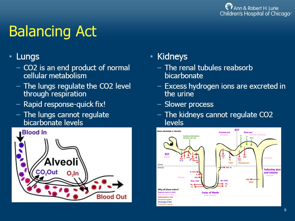 Anion Gap Normal Anion Gap The loss of bicarbonate is compensated for by the retention of chloride Also known as Hyperchloremic Metabolic Acidosis –Diarrhea –Renal Failure, Proximal RTA Elevated Anion Gap MA due to increased H+ load MUDPILES –Methanol –Uremia –DKA –Propylene Glycol –Isoniazid –Lactic Acid –Ethylene Glycol (antifreeze) –Salicylates 17