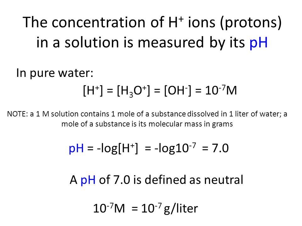 The concentration of H + ions (protons) in a solution is measured by its pH [H + ] = [H 3 O + ] = [OH - ] = 10 -7 M In pure water: pH = -log[H + ] = -log10 -7 = 7.0 A pH of 7.0 is defined as neutral 10 -7 M = 10 -7 g/liter NOTE: a 1 M solution contains 1 mole of a substance dissolved in 1 liter of water; a mole of a substance is its molecular mass in grams