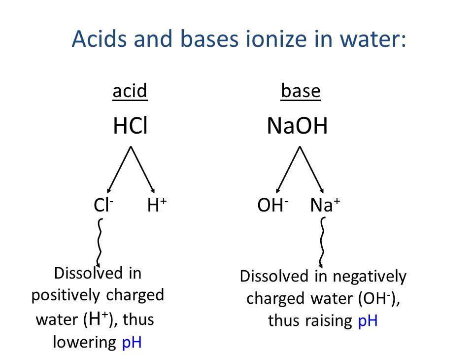 Acids and bases ionize in water: acid HCl Cl - Dissolved in positively charged water ( H + ), thus lowering pH base Na + Dissolved in negatively charged water (OH - ), thus raising pH NaOH OH - H+H+