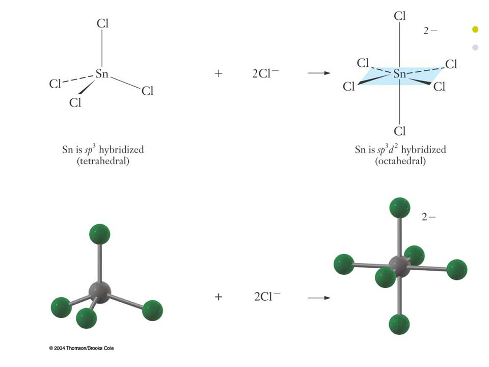 24 The Autoionization of Water Water can be either an acid or base in Bronsted-Lowry theory.