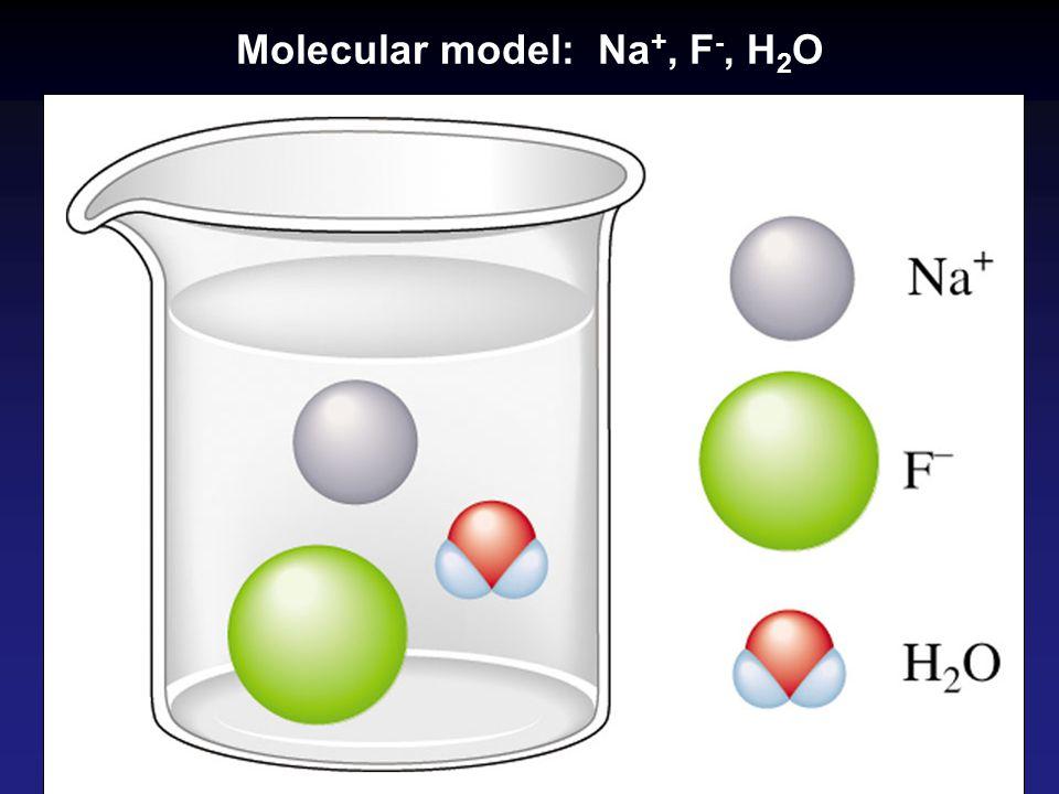 Molecular model: Na +, F -, H 2 O