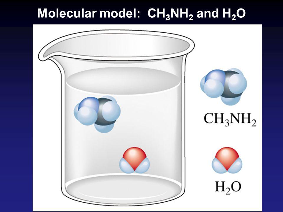 Molecular model: CH 3 NH 2 and H 2 O