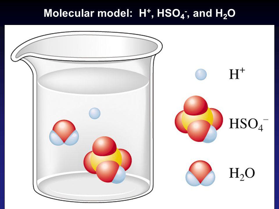 Molecular model: H +, HSO 4 -, and H 2 O