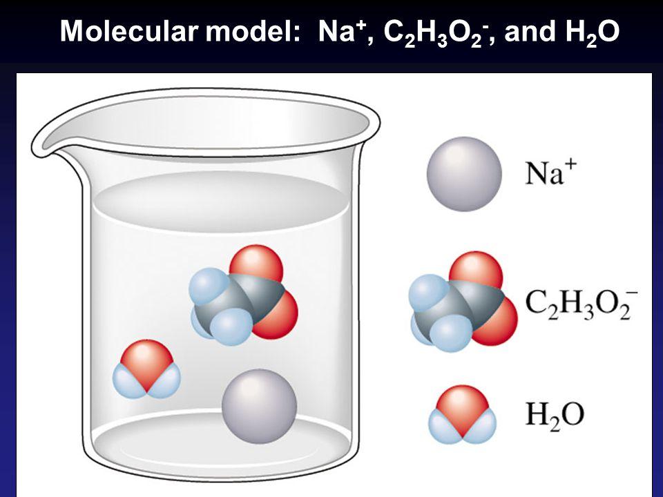 Molecular model: Na +, C 2 H 3 O 2 -, and H 2 O