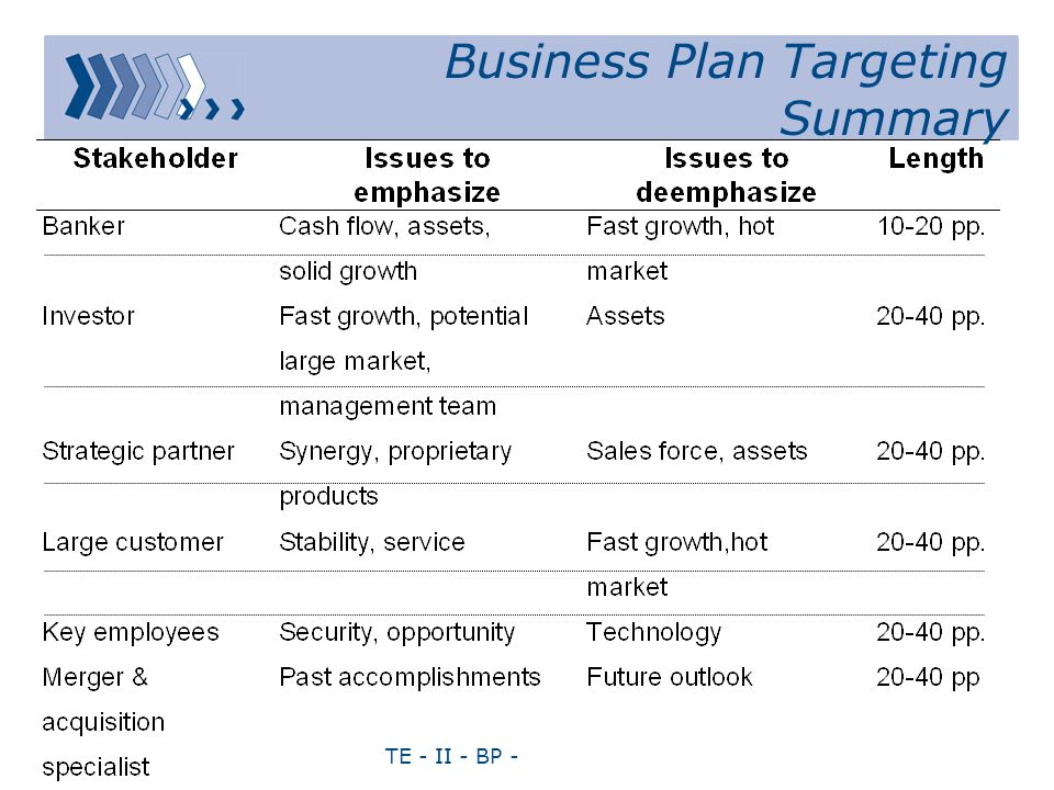 TE - II - BP - Business Plan Targeting Summary