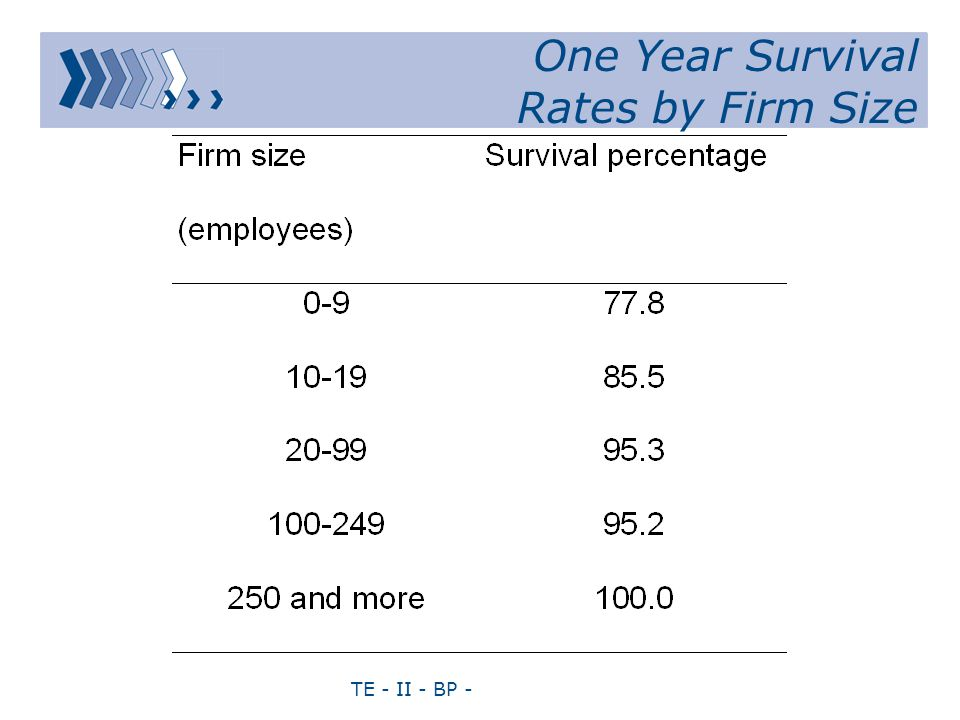 TE - II - BP - One Year Survival Rates by Firm Size