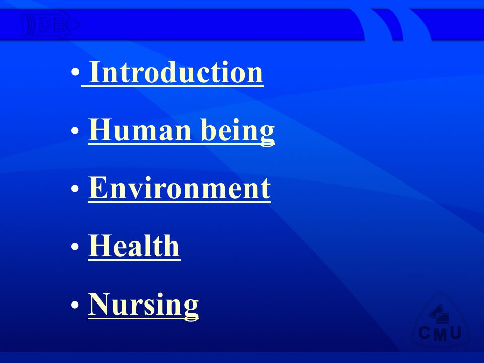 Introduction Introduction Human being Human being Environment Health Nursing