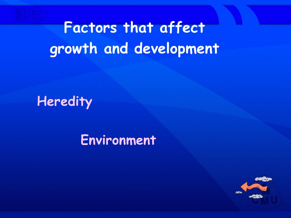 Factors that affect growth and development Heredity Environment