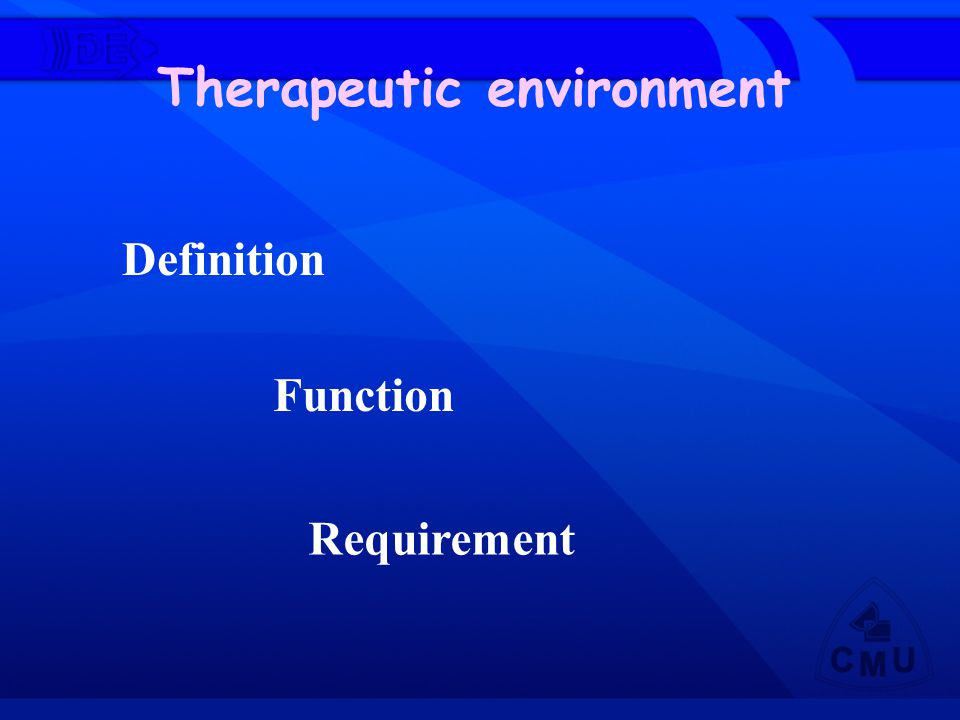 Definition Therapeutic environment Function Requirement
