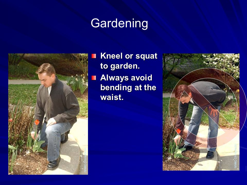 Gardening Kneel or squat to garden. Always avoid bending at the waist. NNMC Chiropractic
