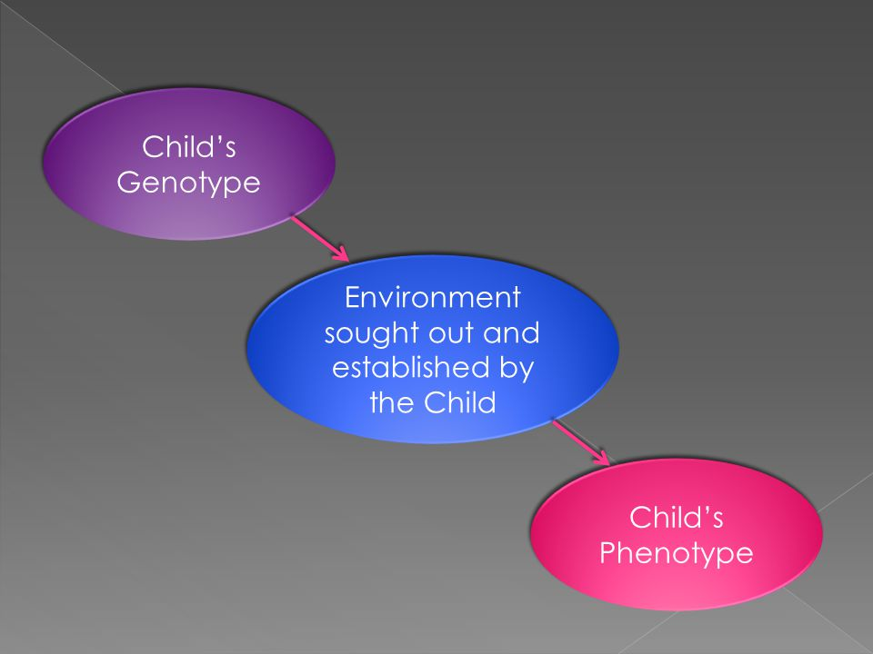 Child's Genotype Environment sought out and established by the Child Child's Phenotype