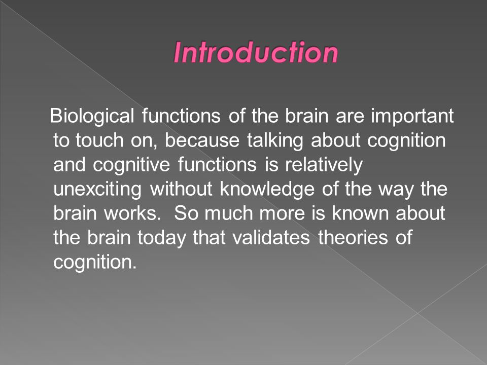 Biological functions of the brain are important to touch on, because talking about cognition and cognitive functions is relatively unexciting without