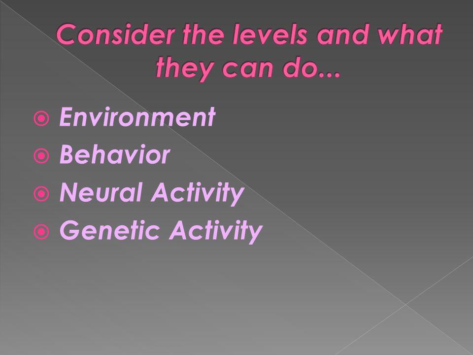  Environment  Behavior  Neural Activity  Genetic Activity