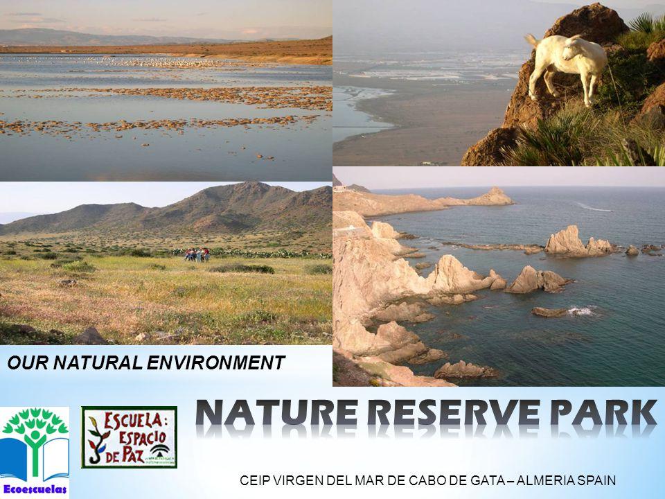 OUR NATURAL ENVIRONMENT CEIP VIRGEN DEL MAR DE CABO DE GATA – ALMERIA SPAIN