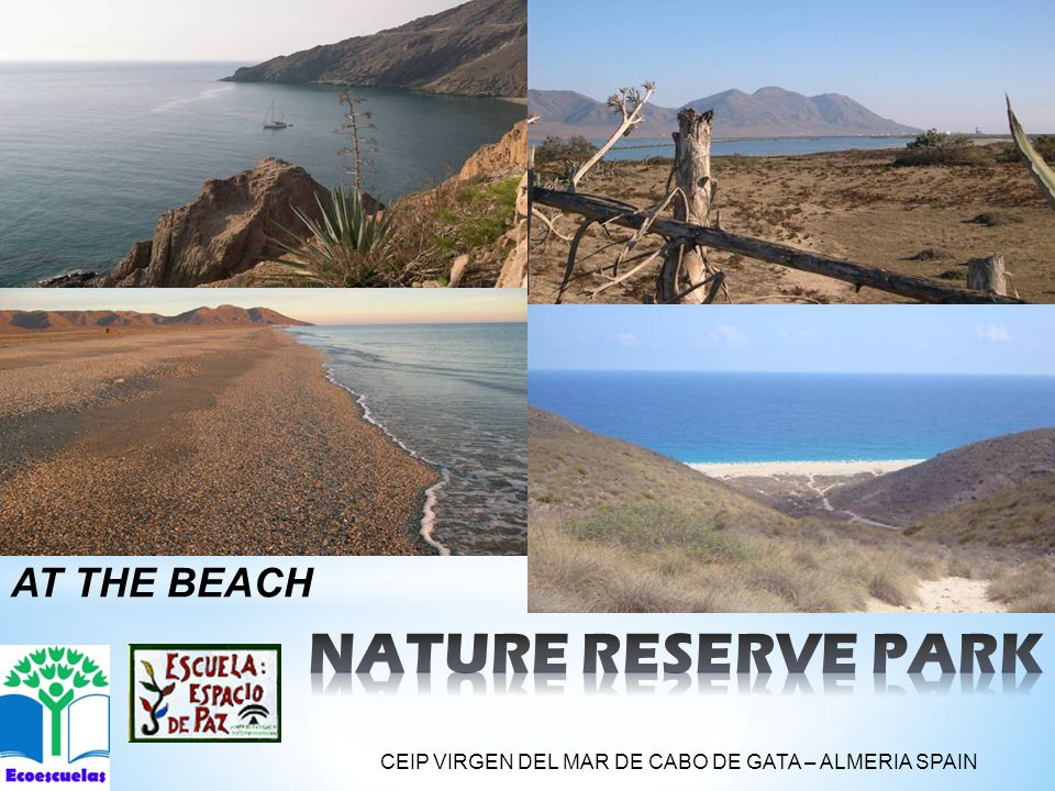 AT THE BEACH CEIP VIRGEN DEL MAR DE CABO DE GATA – ALMERIA SPAIN