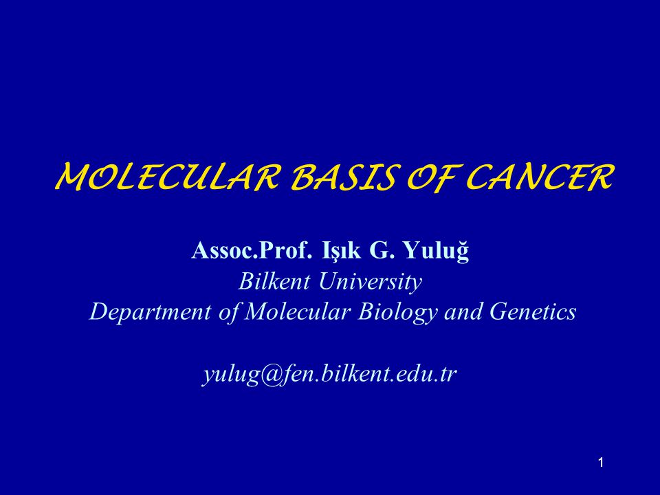 1 MOLECULAR BASIS OF CANCER Assoc.Prof. Işık G. Yuluğ Bilkent University Department of Molecular Biology and Genetics yulug@fen.bilkent.edu.tr